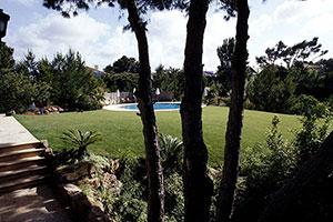 Morgado Ribeiro Garden
