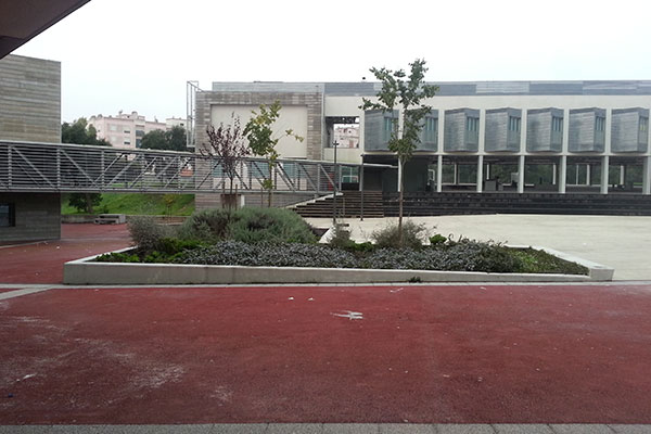 D. João II School